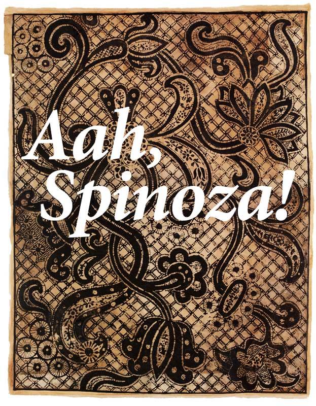 aah, spinoza!
